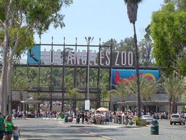Зоопарк Лос-Анджелеса, штат Калифорния, США