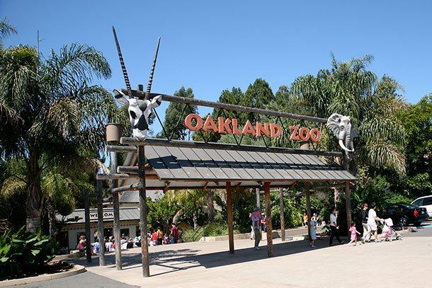 Зоопарк Окленда, штат Калифорния, США
