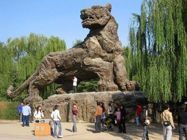 Зоопарк Пекина, Китай