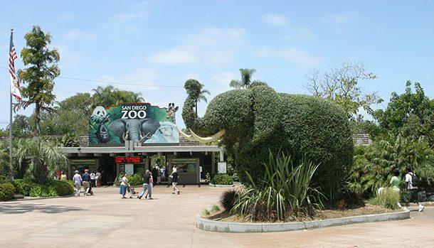 Зоопарк Сан-Диего, штат Калифорния, США