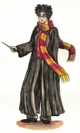 Гарри Поттер — душевнобольной