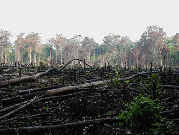 Разрушение окружающей среды