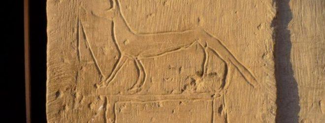 10 фактов, подтверждающих, что реклама появилась ещё в древнем мире