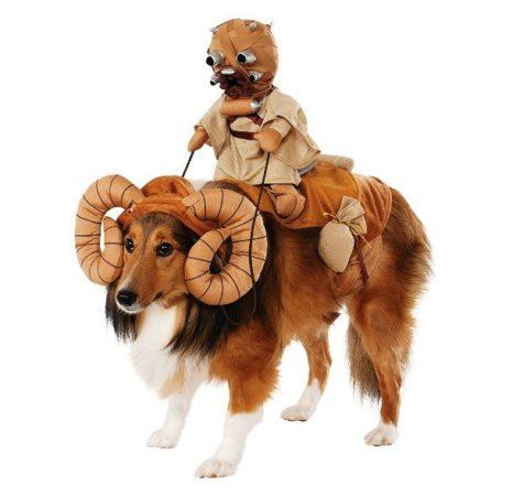 Собака в костюме Банта