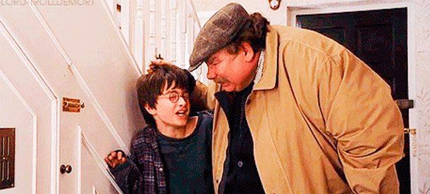 Гарри Поттер и его дядя