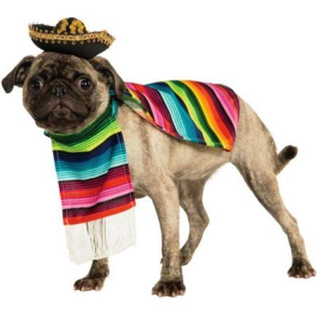 Мопс в мексиканском пончо