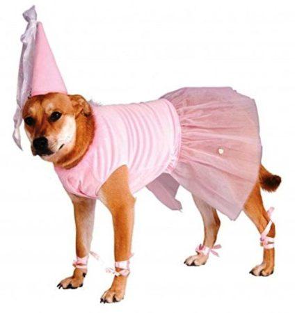 Собака в розовом костюме феи