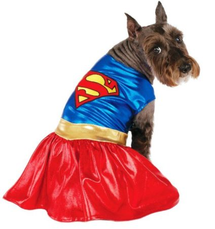 Собака в костюме супергерл