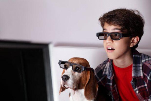 Мальчик и собака в очках