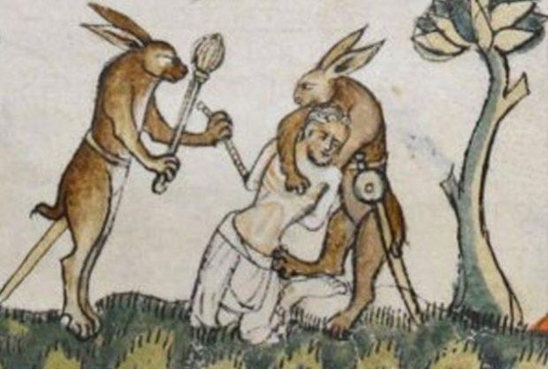 Кролики бьют человека