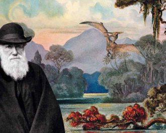 Загадки эволюции