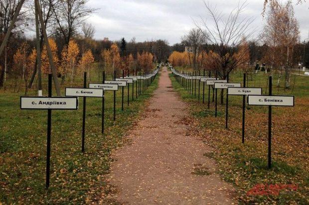 кладбище сел возле припяти