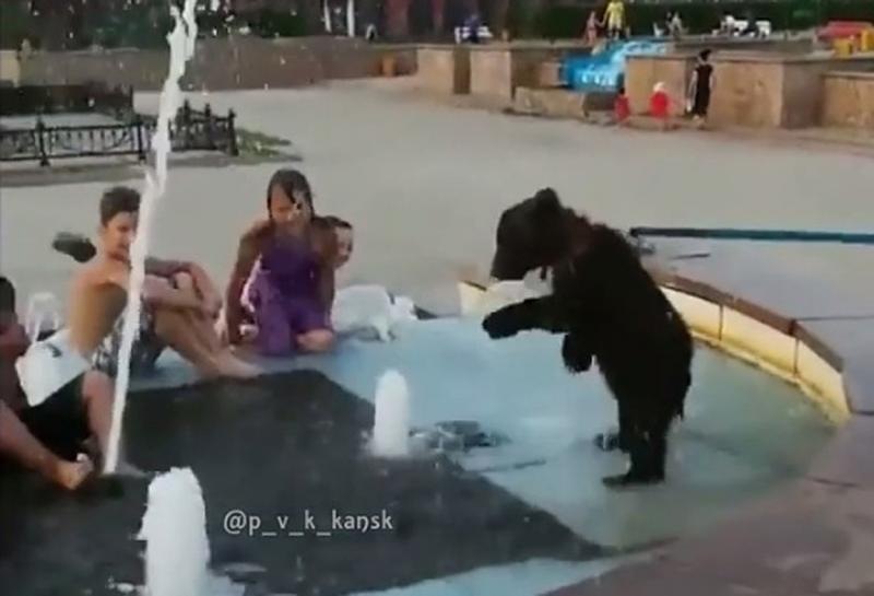 Мишка в фонтане Канска