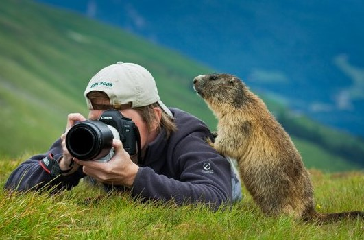 фотографии звери и фотографы