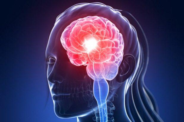 Раздражённый мозг