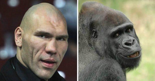 Николай Валуев и горилла