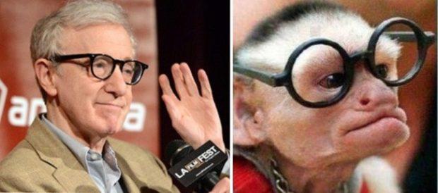 Вуди Аллен и мартышка в очках