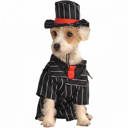 Пёс в элегантном полосатом костюме и шляпе