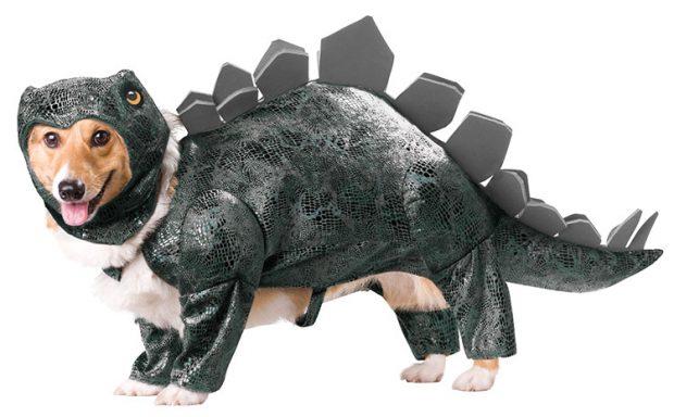 Пёс в костюме динозавра