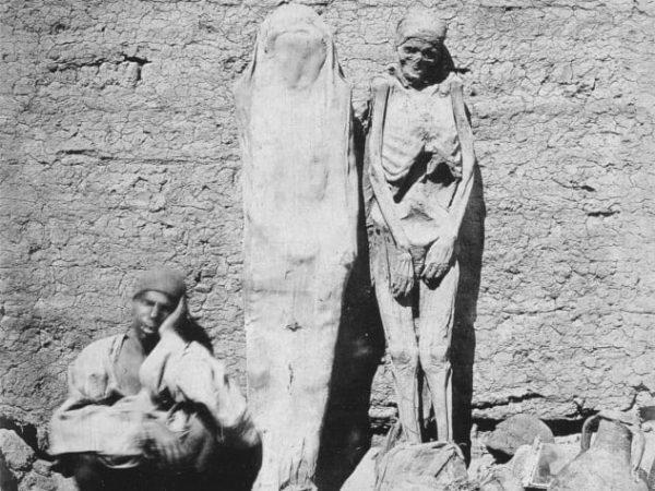 Мумии около стены