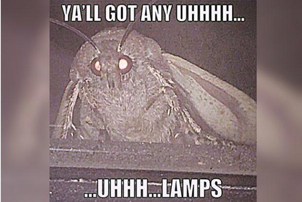 Мем про мотылька