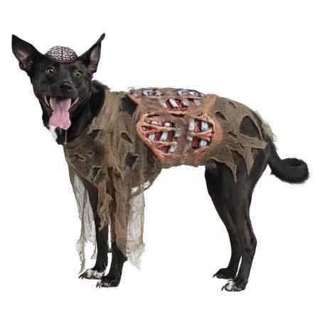 Собака в костюме зомби