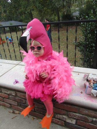 Девочка в костюме фламинго