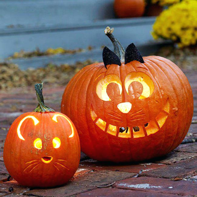 Новым, смешные картинки к хэллоуину