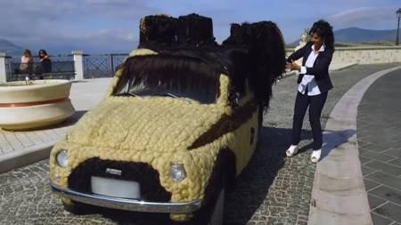 Обивка для машины из волос