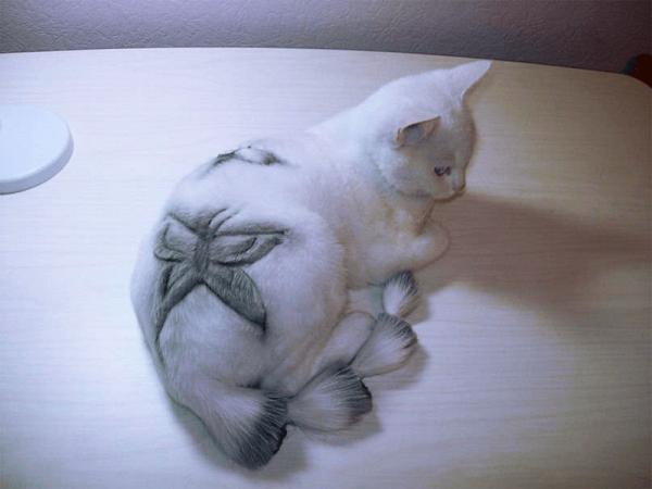 Цветастый кот