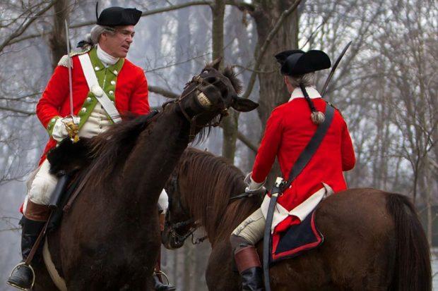 Счастливый конь в кадре