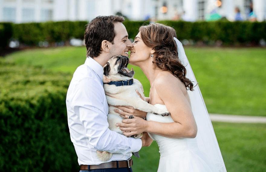самые смешные фото на свадьбе очевидная прическа
