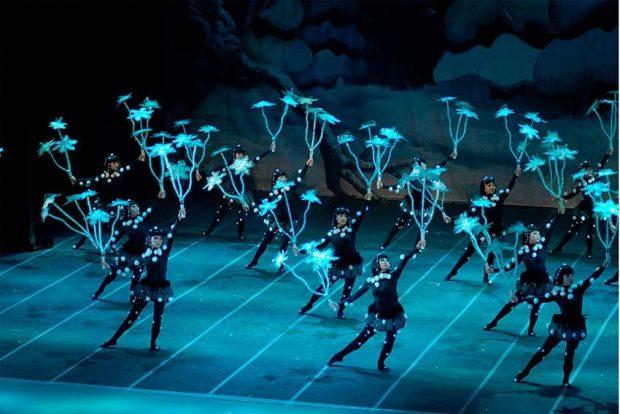 Балетно-акробатическое шоу