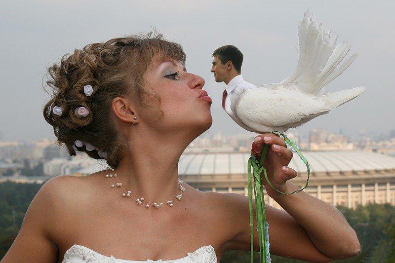 Картинки, смешные картинки женитьбы