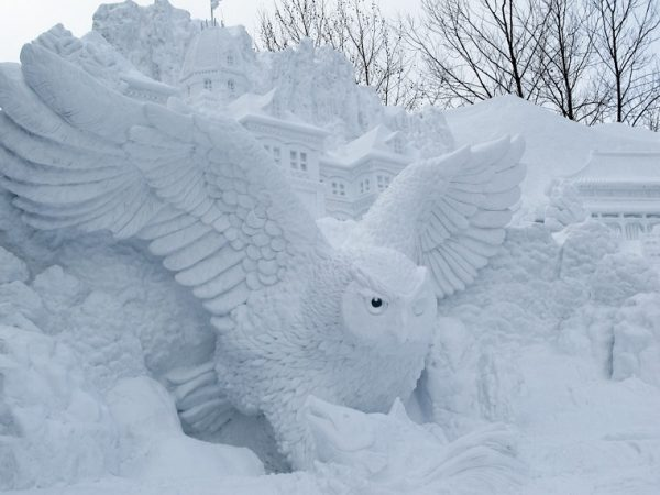 Сова из снега