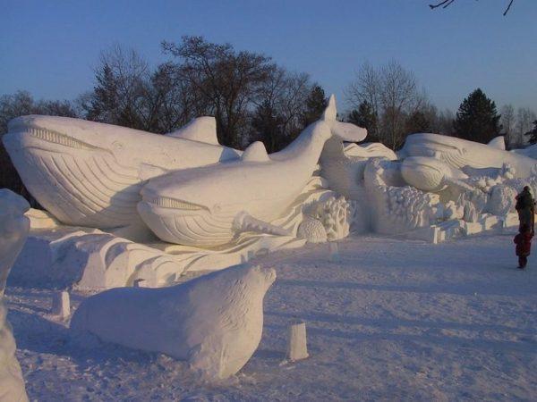 Морские обитатели из снега