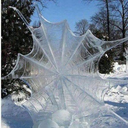 Замёрзшая паутина