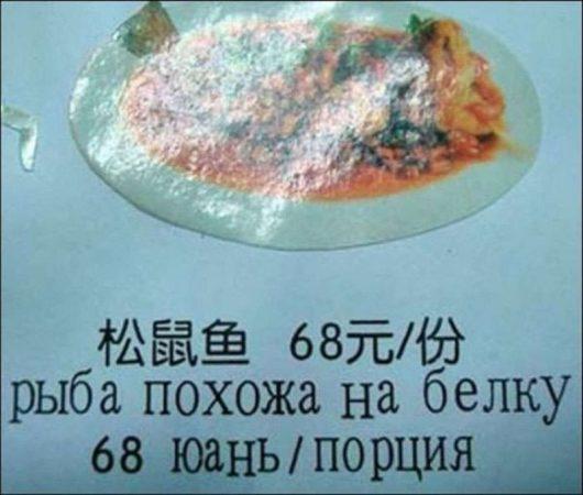 Рыба, похожая на белку