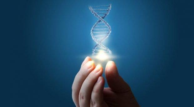 Модель молекулы ДНК в руке