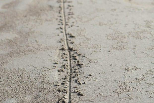 Черта на песке