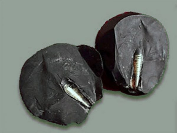 Камни с металлическим стержнем
