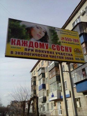 Реклама ёлочных базаров