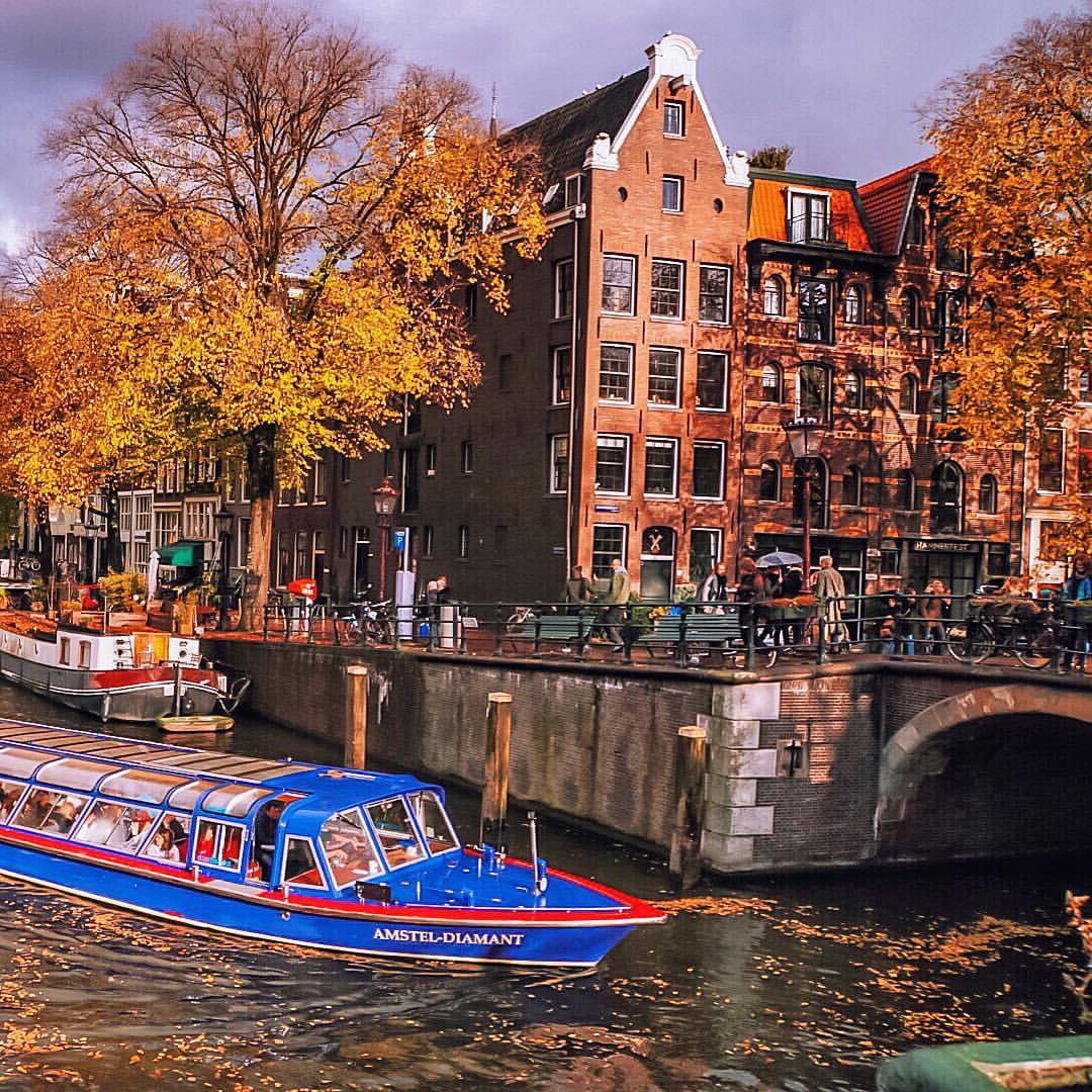 опускал предметы амстердам в ноябре фото эти